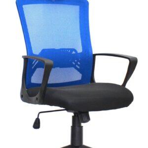 Oxford Ergonomic Office Chair