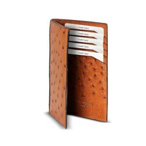 Lexi Ostrich Quill Coat Wallet