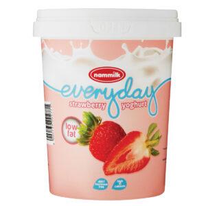 Low Fat Everyday Yoghurt 500G x 12