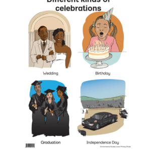 Different Kinds Of Celebrations - Poster