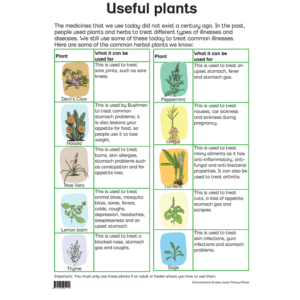 Useful Plants - Posters
