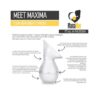 Award-winning Silicone Hands-Free Breast Pump and Plastic Lid